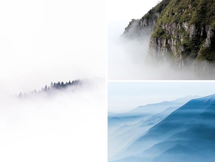 Fog and Mist